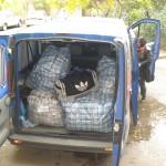 Transporthilfe für Olim